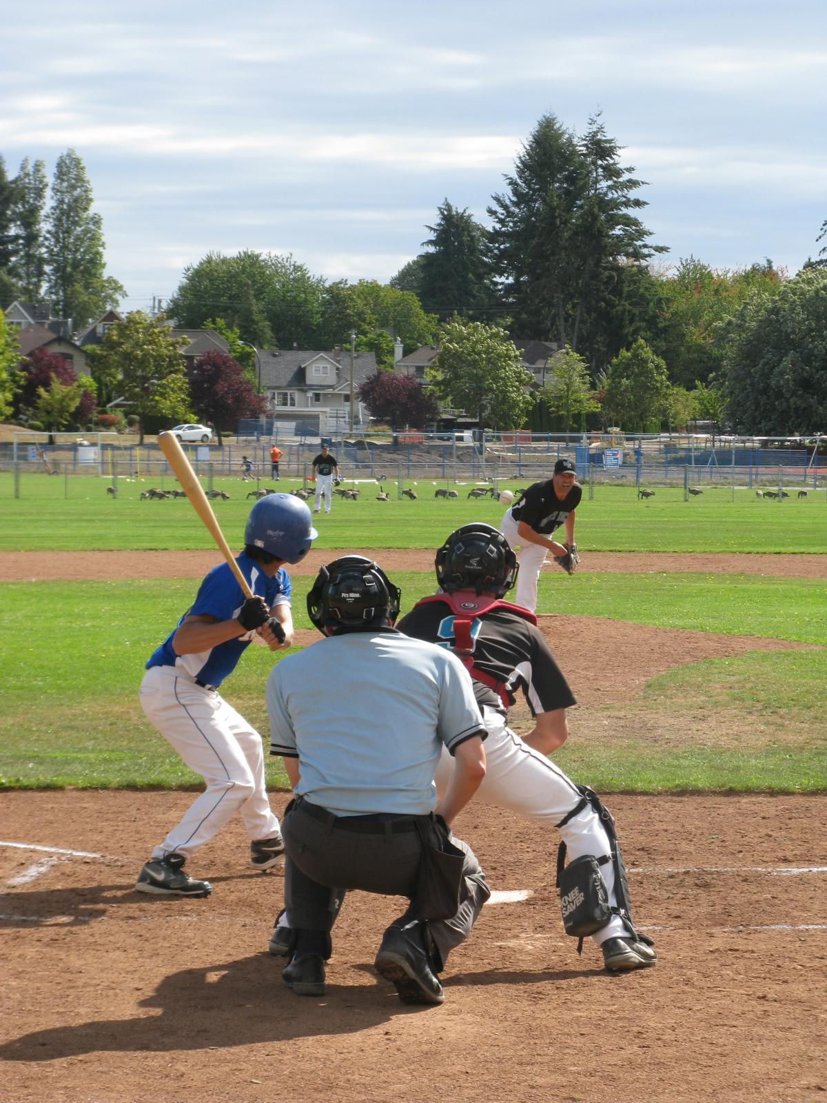 Sixteen LMBA Masters Baseball Teams in Action on Opening Weeked for 2016 Americas Master Games