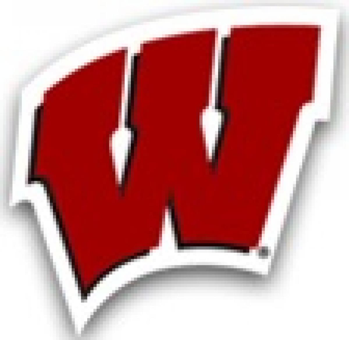 Wisconsin Badgers Softball Camps