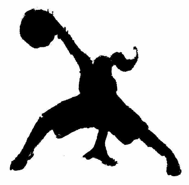 Houston Crossover basketball HOME